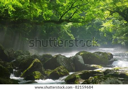 Mountain stream and shaft beam of light - stock photo
