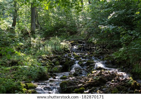 Mountain stream between trees and stones.  - stock photo