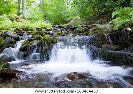 Mountain stream between trees and stones. Water splashing.