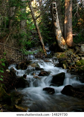 Mountain stream cascading over rocks - stock photo