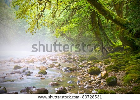 mountain stream, fairy trees on the banks, morning - stock photo
