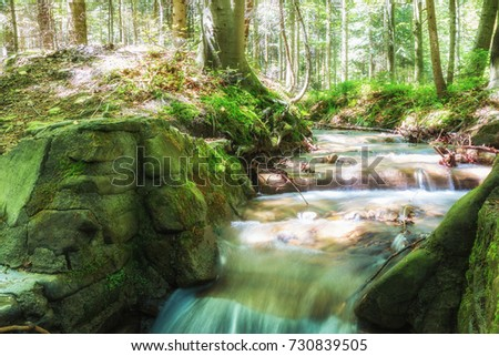 Mountain stream flowing in the sun. Mountain stream ina small creek in the forest