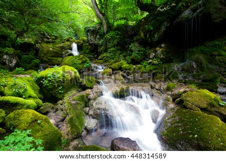 mountain stream in deep bulgarian forest - stock photo