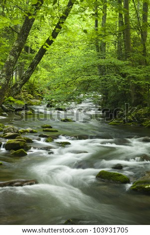 Mountain Stream in the Spring - stock photo