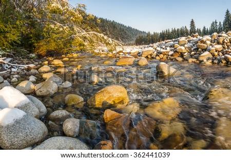 mountain stream in the Tatras - stock photo