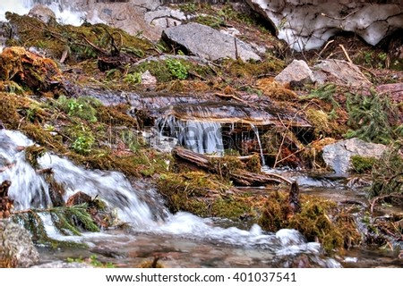 Mountain stream, mountain stream. Zailiyskiy Alatau. The Republic Of Kazakhstan.