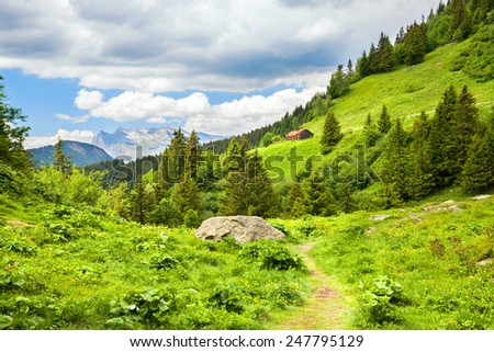 mountain summer landscape - stock photo