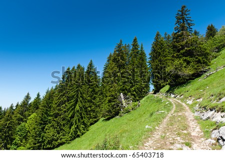 Mountain trail in Alps under blue sky. Chamonix valley, France. - stock photo