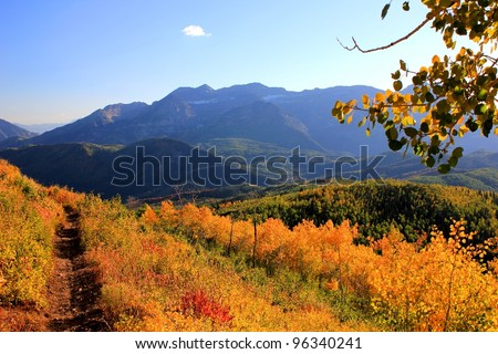 mountain trail through fall colors. - stock photo