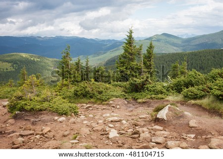 Mountain trails. Carpathians