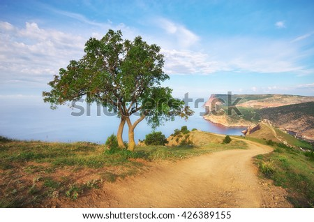 Mountain, tree and sea. Nature composition. - stock photo