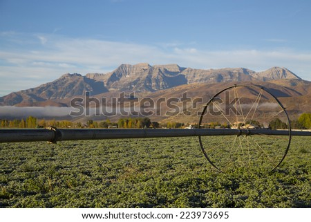 Mountain valley hay field with irrigation sprinkler - stock photo