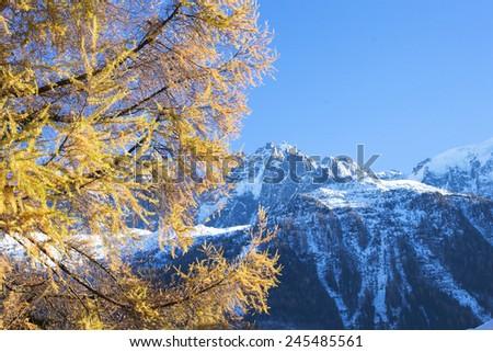 Mountain view in French Alps, Chamonix  - stock photo