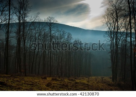mountain with foggy valley