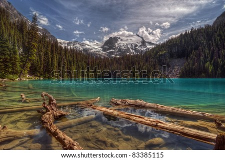 Mountain with glacier, blue sky, and a forest towering above driftwood and rocky shore - stock photo