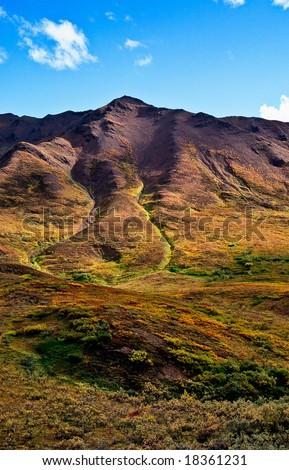 mountainous landscape in Denali nationalpark - stock photo