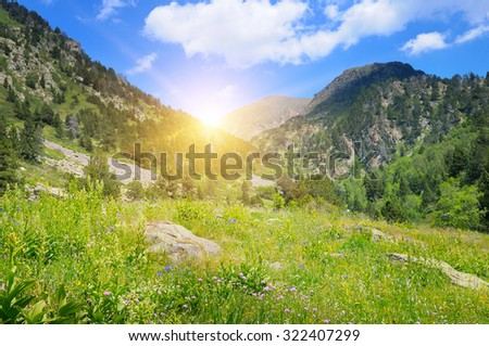 mountains, alpine meadows and sunrise - stock photo