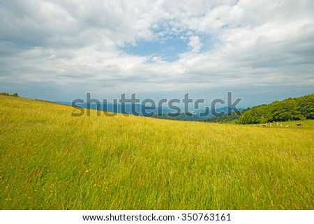 Mountains and fields in summer