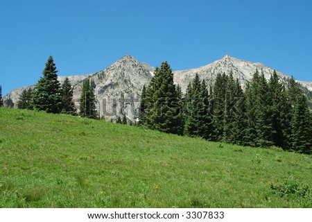 Mountains and trees - stock photo