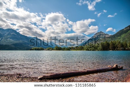 Mountains behind Waterton Lake and log in foreground. - stock photo