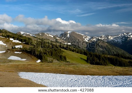 Mountains by the Hurricane Ridge, Olympic National Park, WA - stock photo