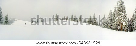 Mountains covered in snow in winter and pine trees in foreground.