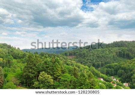 mountains covered with forests - stock photo