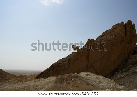 Mountains in Tunisia - stock photo