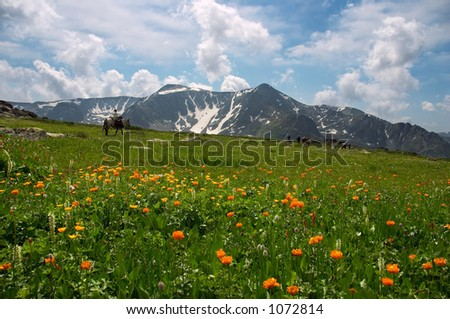 Mountains landscape. Altay - stock photo