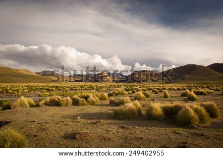 Mountains of Bolivia, altiplano, desert and green landscapes, trees and rocks, sand and water, sky and earth. Beautiful views of South America. - stock photo