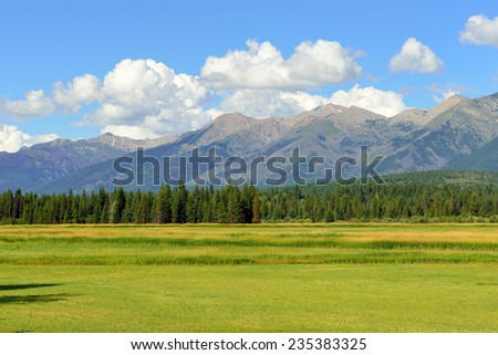 Mountains of Montana and a meadow near Glacier National Park in Summer - stock photo