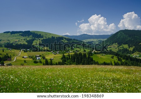 Mountains top view meadow forest and blue sky