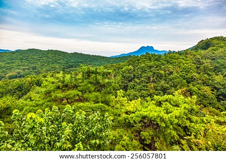 Mountains with green trees landscape in South Korea