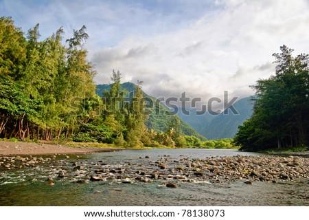 Mounts and jungle in foggy weather. Big island. Hawaii. USA - stock photo