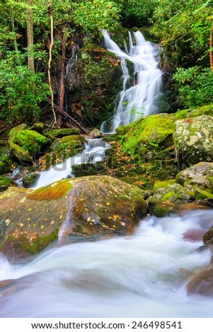 Mouse Creek Falls in Great Smoky Mountains National Park - stock photo