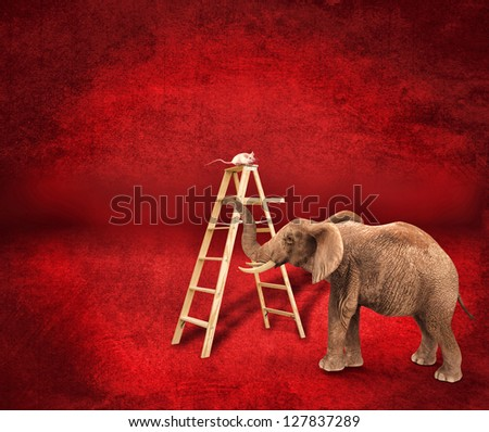 Mouse in scale with an elephant - stock photo