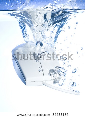 Mouse in water