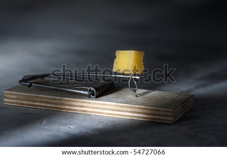 Mousestrap with cheese - stock photo