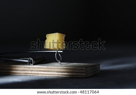 Mousestrap with cheese closeup - stock photo