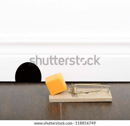 Mousetrap set with cheddar cheese on a floor, next to a mouse hole.