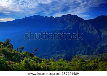 Moutain tropical forest with blue sky and clouds, Tatama National Park, high Andes mountains of the Cordillera, Colombia - stock photo