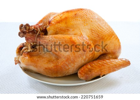 Mouth-watering golden roasted turkey over white background, no garnish.  - stock photo