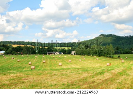 Mowed farm field with bales of hay - stock photo
