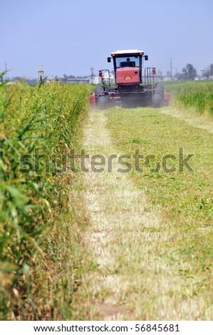Mowing alfalfa for hay on a California farm - stock photo