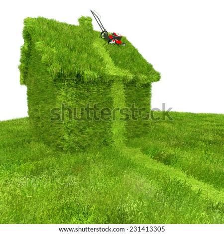 Mowing The Lawn: A whimsical illustration about lawn care and property neglect. The image depicts a house grown over with grass and an abandoned attempt at mowing with the lawn mower still on the roof - stock photo