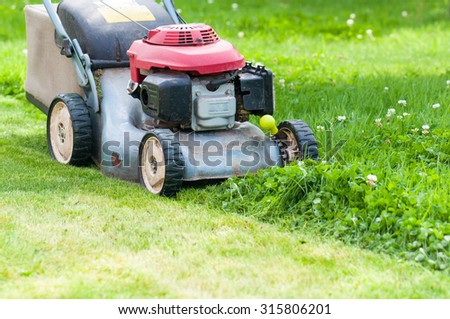 mowing the lawn in my garden