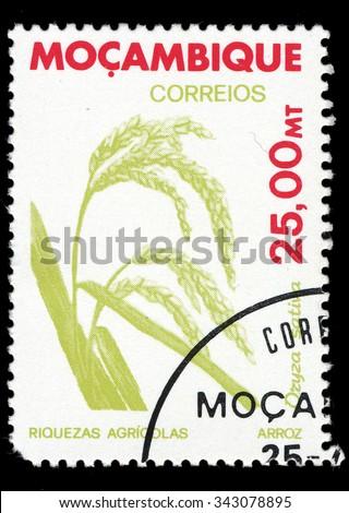 MOZAMBIQUE - CIRCA 1981: A stamp printed in Mozambique shows Rice (Oryza sativa), circa 1981 - stock photo