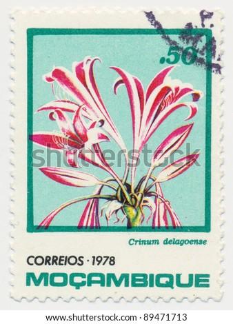 MOZAMBIQUE - CIRCA 1978: A stamp printed in Mozambique shows tropical flowers (Crinum delagoense), series, circa 1978 - stock photo