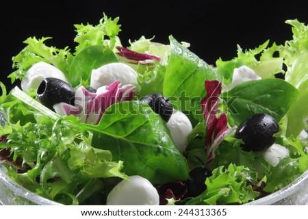 mozzarella and olives salad - stock photo