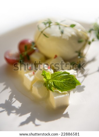 mozzarella and spices with space for text - stock photo